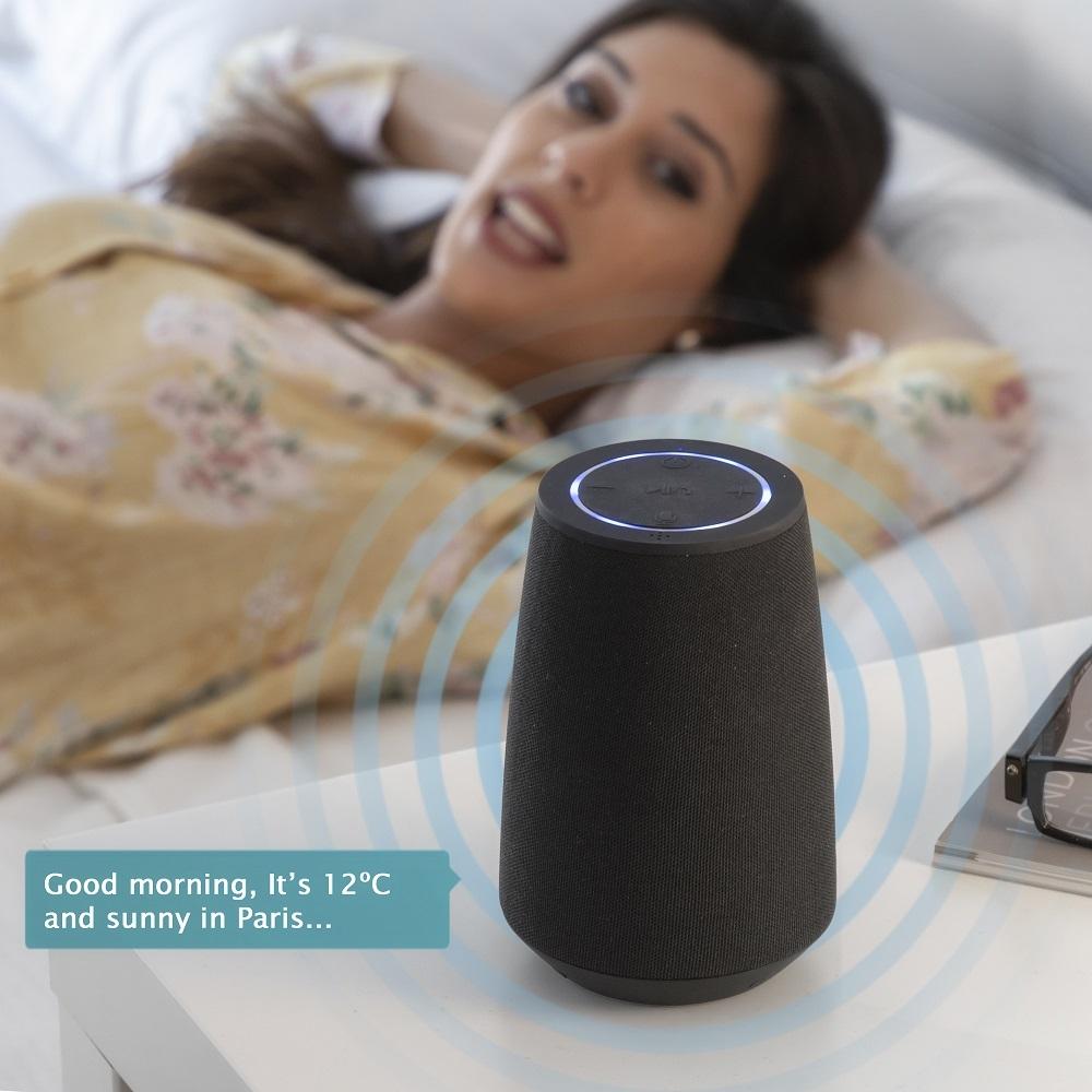 VASS stemmeassistent højtaler – bluetooth – iOs og android